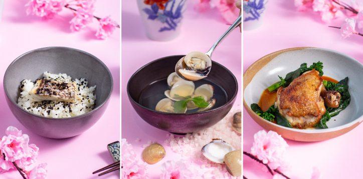 japanese-dinner-set1-2-2